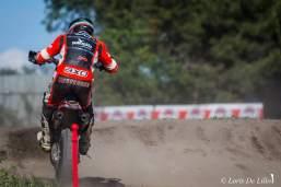 Max Verderosa 7